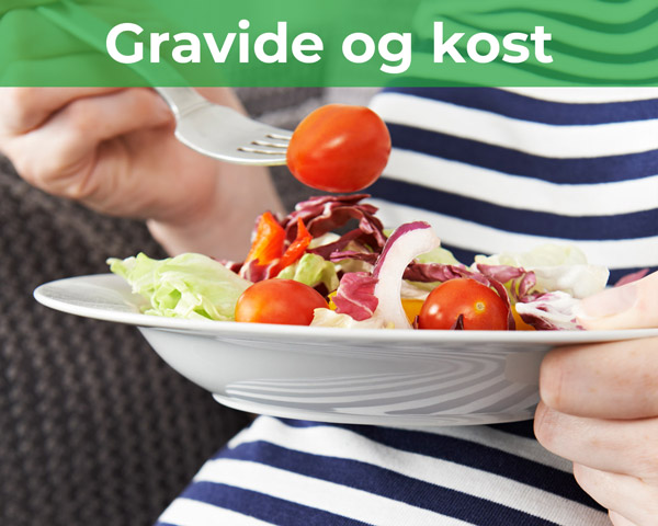grid-gravide-og-kost